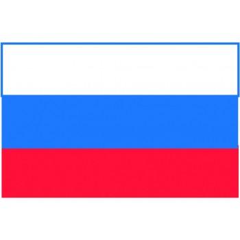 Bandiera Russia 20x30 cm