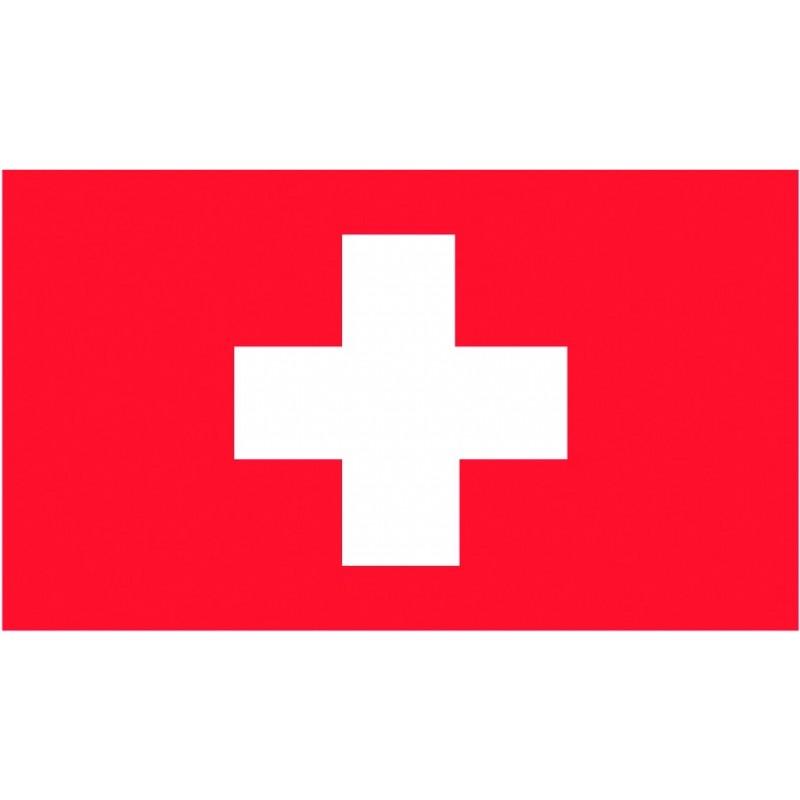 Bandiera Svizzera 20x30 cm