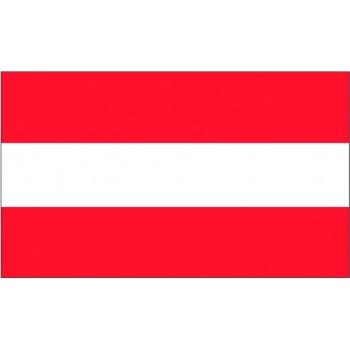 Bandiera Austria 20x30 cm