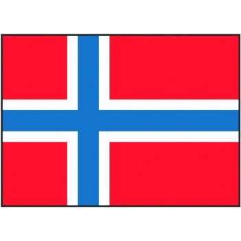 Bandiera Norvegia 20x30 cm