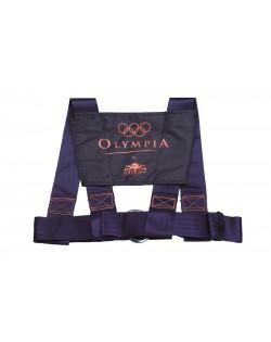 Cintura di sicurezza mod. «Olimpia» - Adulto