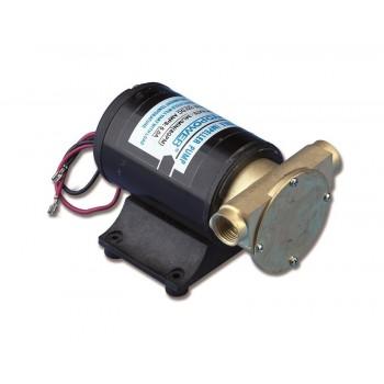 Pompa a girante uso esterno 12V