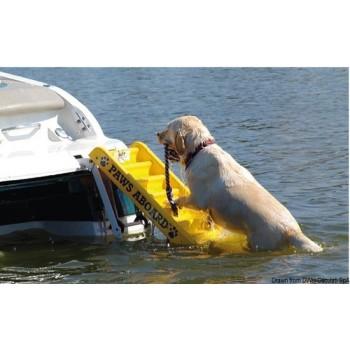 Scaletta bagno per cani
